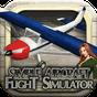 Cessna 3D uçuş simülatörü