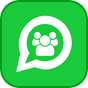 WhatsProfile de WhatsApp